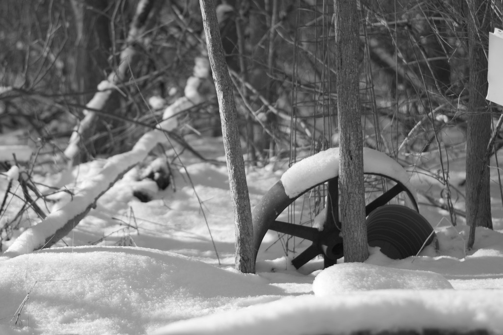 Snow covered wheel by meemakelley