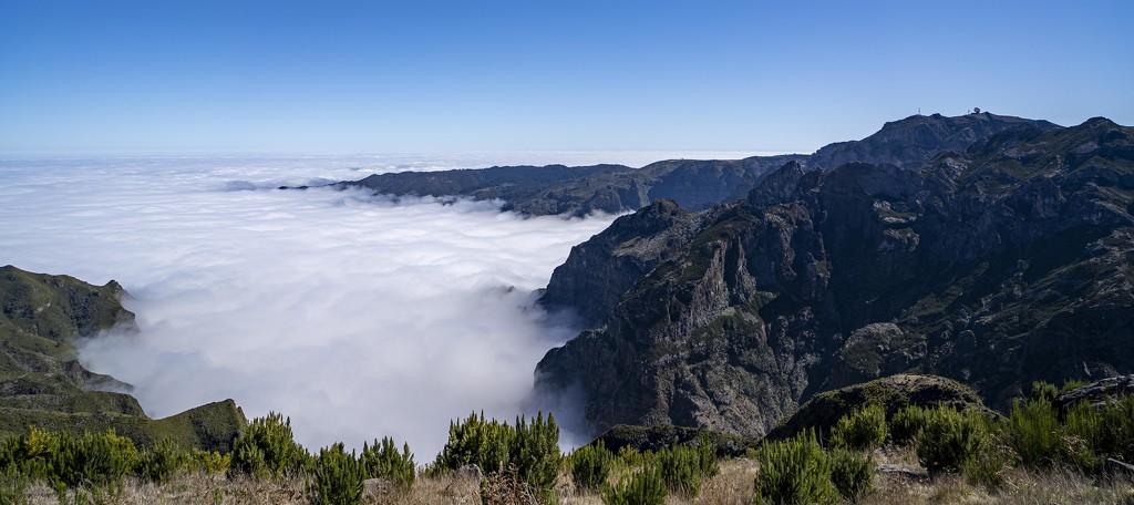 Carpets of Cloud. by gamelee