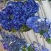 Blue Floral Decorations
