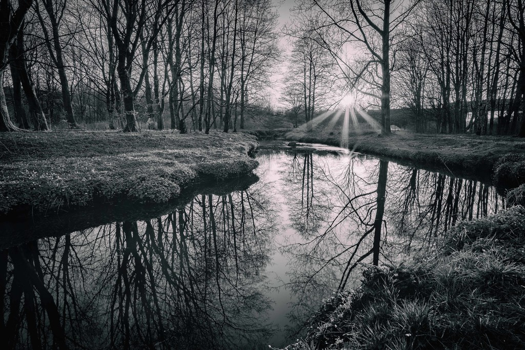 Middle Brook. by gamelee