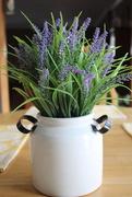 28th Mar 2020 - Lavender for rainbow2020