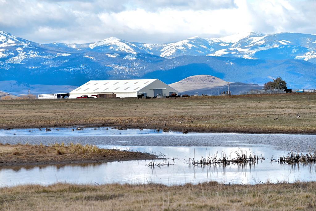Scenic Western Montana by bjywamer