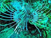 26th Mar 2020 - Lion fish 2