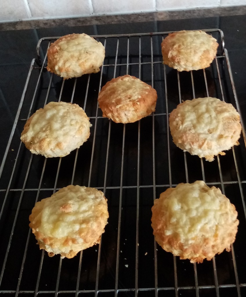 Cheese Scones by g3xbm