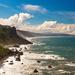 The Coastline in Redwood National Park by photograndma