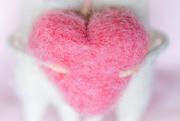 29th Mar 2020 - Pink Heart