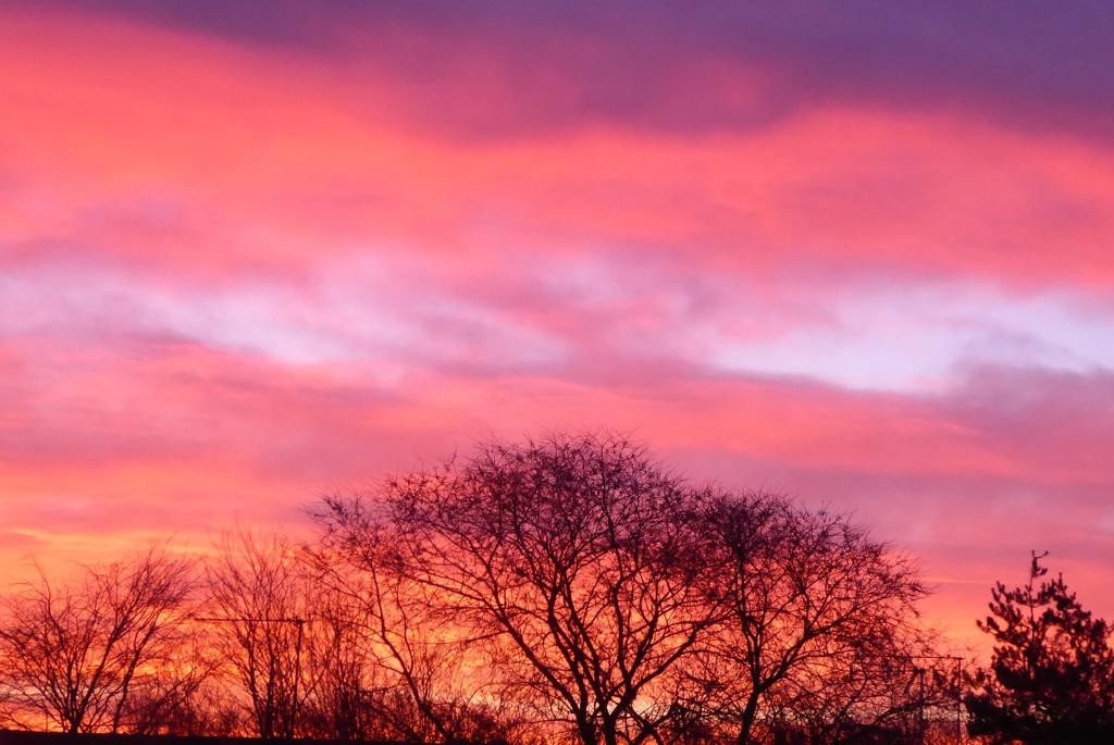 Fiery sunrise by speedwell