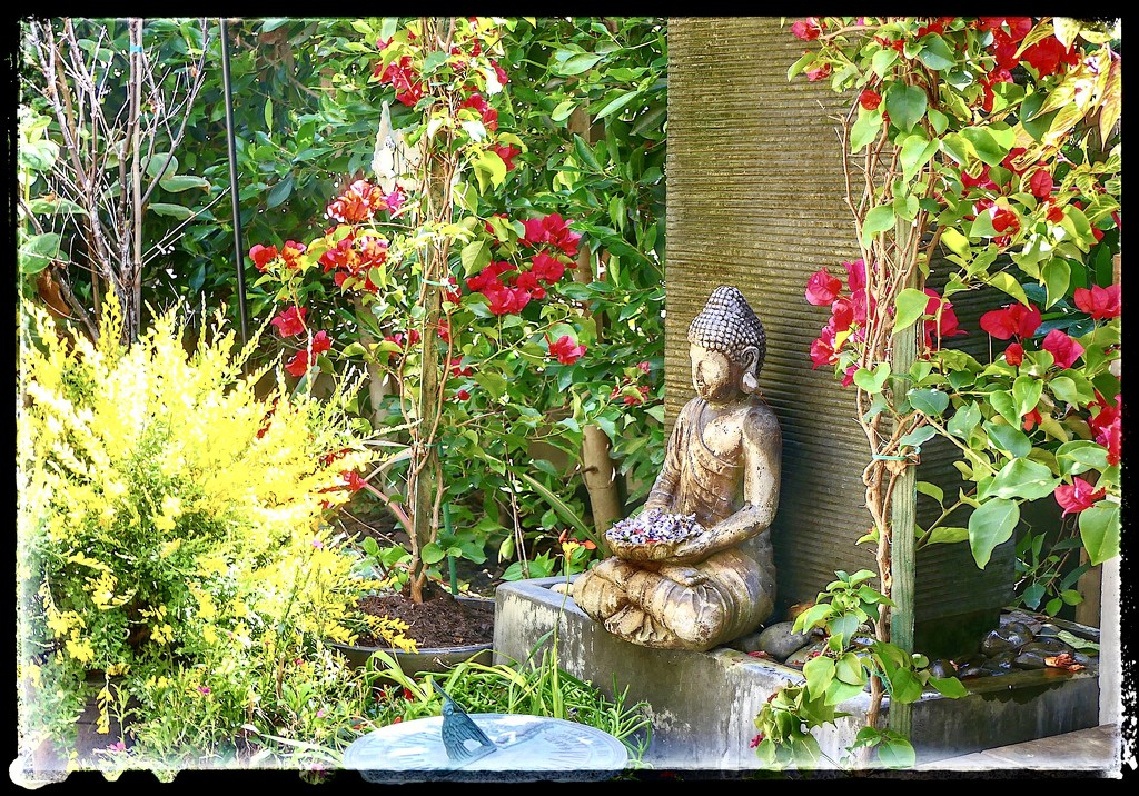 A Tranquil Garden by redy4et