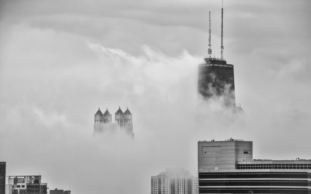 Fog Arrives by taffy