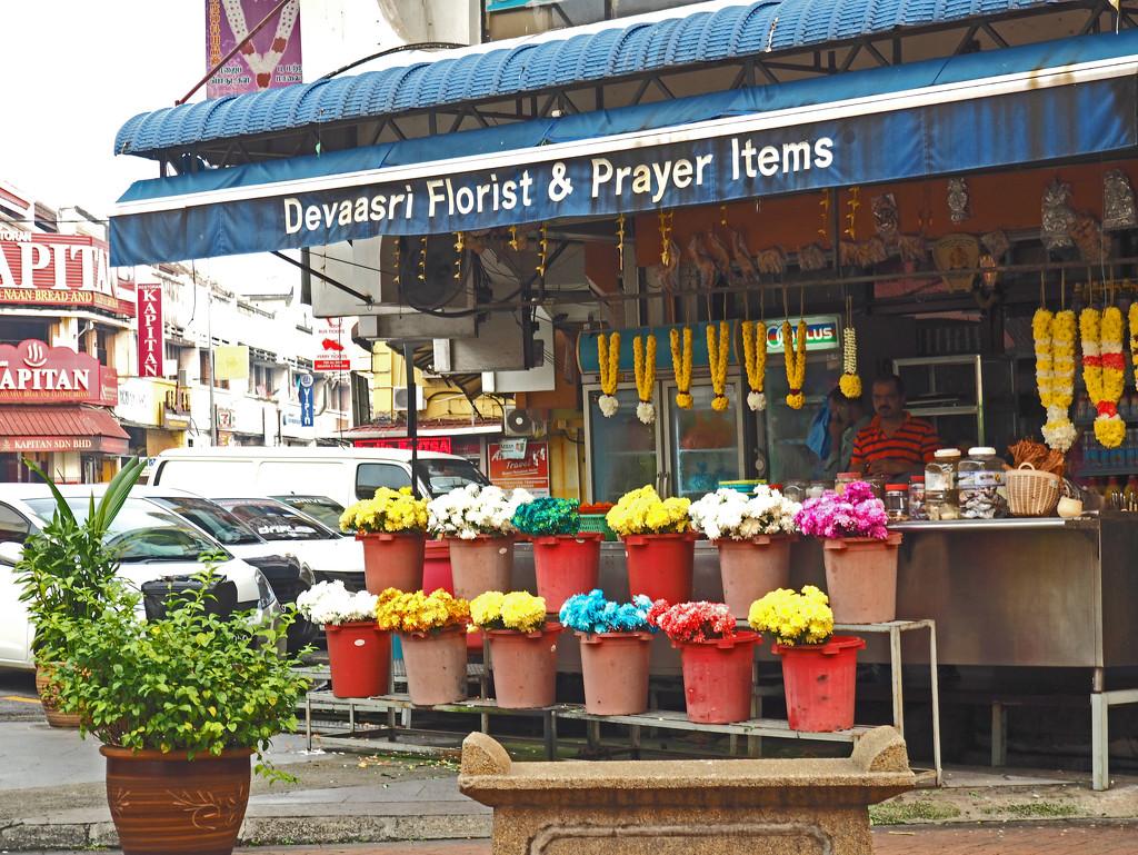 Prayer flowers by ianjb21
