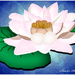 Water Lily (painting)