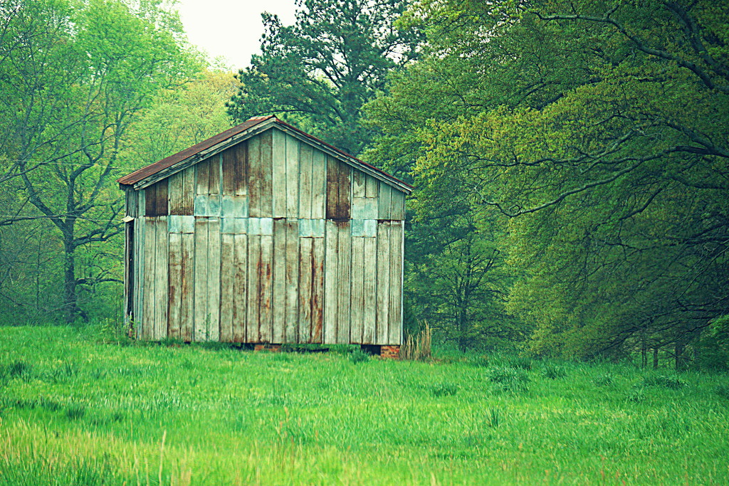 Rustic by sunnygirl