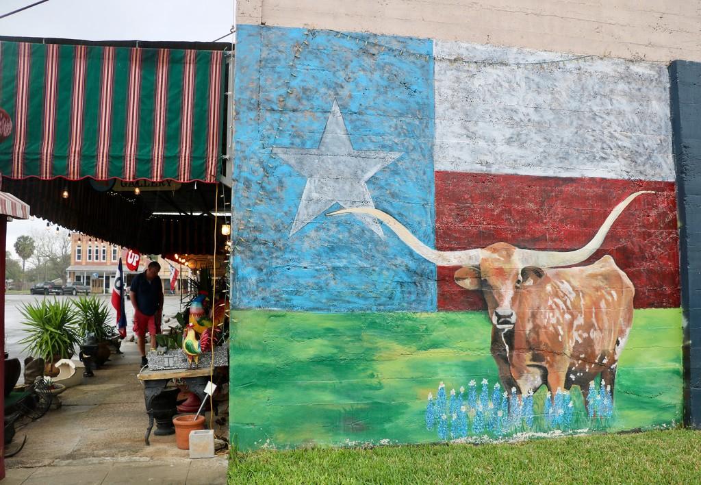 Texan Longhorn 1 by momamo