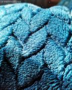 27th Mar 2020 - Blanket Blues