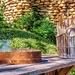 Dylan Lewis sculpture garden