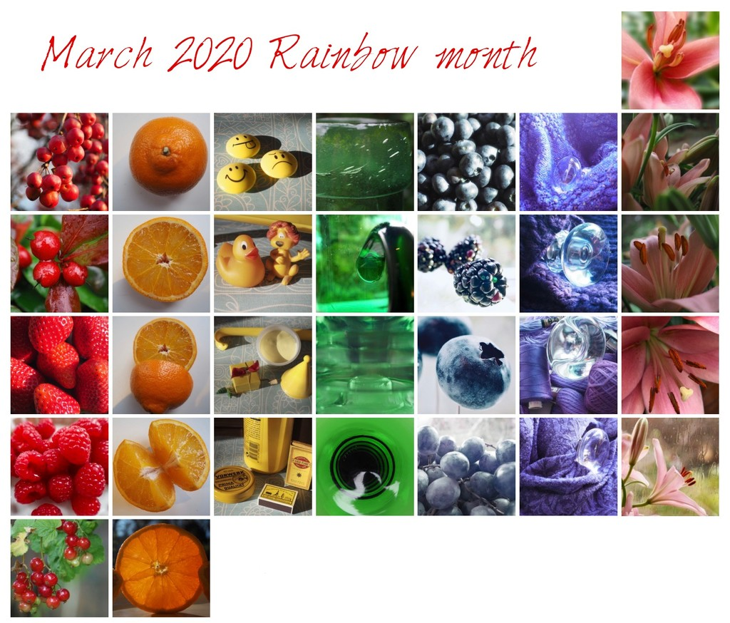 Rainbow 2020 by jacqbb