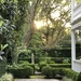 A beautiful Charleston garden in the historic district