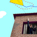 The kite #10