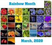 31st Mar 2020 - Rainbow 2020