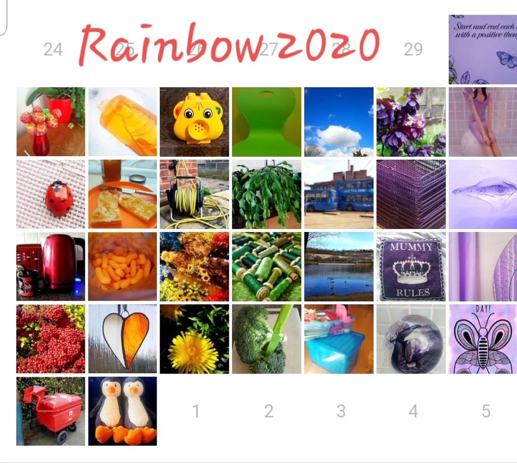 Rainbow 2020 by serendypyty