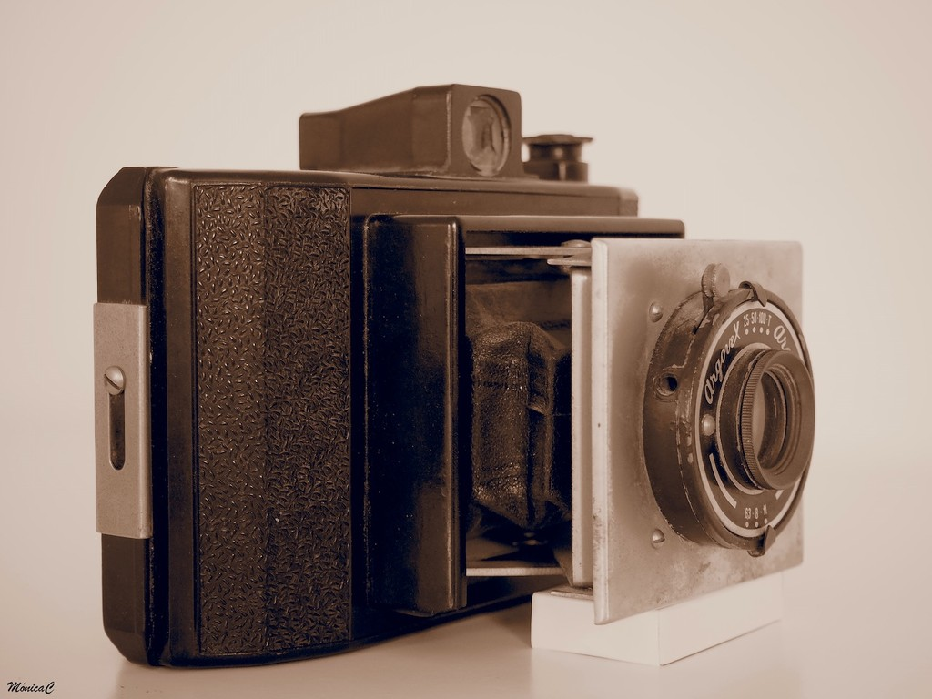 Today's cameras great-grandma by monicac