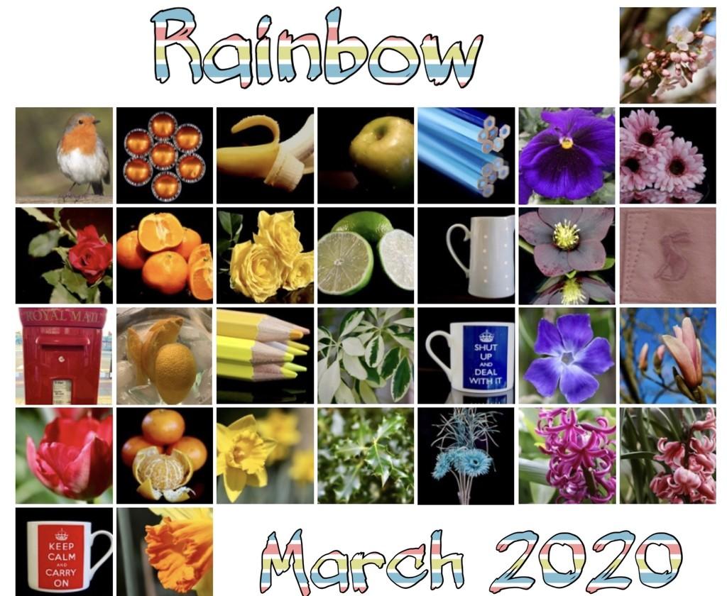 Rainbow Challenge 2020 by phil_sandford