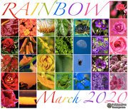1st Apr 2020 - somewhere over my rainbow