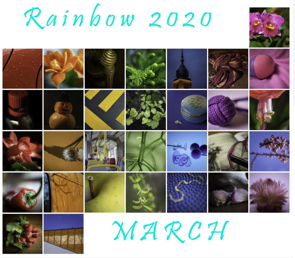 rainbow 2020 by haskar