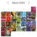 Rainbow Month 2020