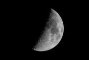 31st Mar 2020 - Tonight's Moon