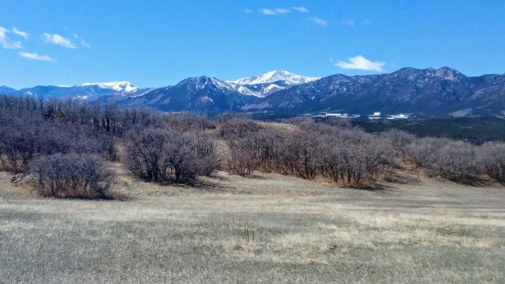 Colorado Spring Day by harbie