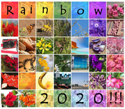 1st Apr 2020 - Rainbow 2020