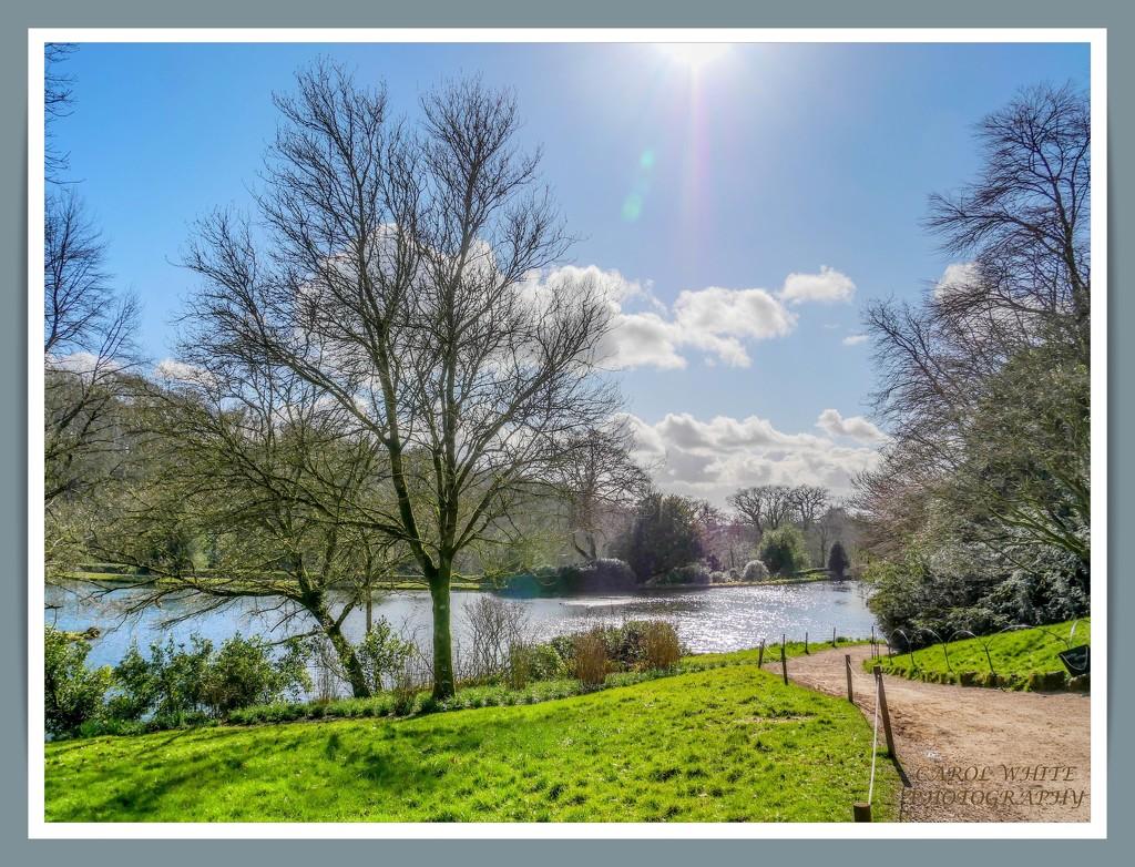 The Lake,Stourhead by carolmw