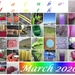Rainbow month - March 2020