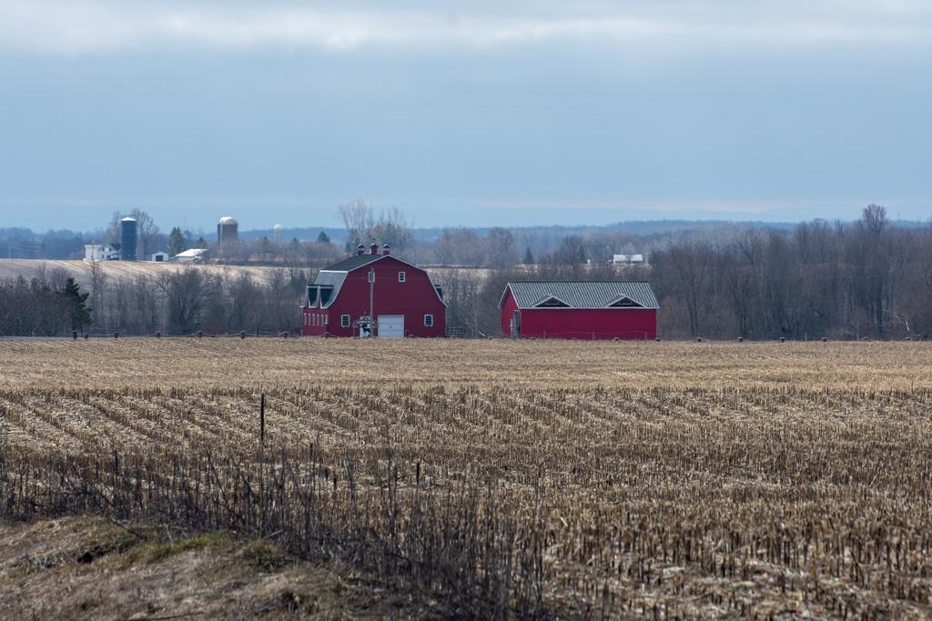 The Little Red Barn by farmreporter