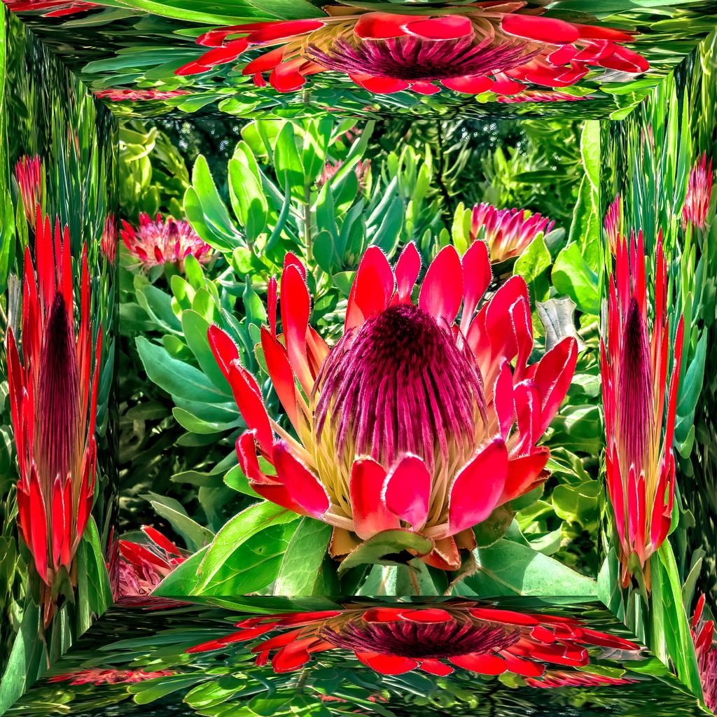 Mirror box by ludwigsdiana