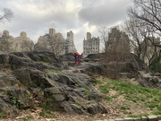 1st Apr 2020 - Central Park, during Social Distancing