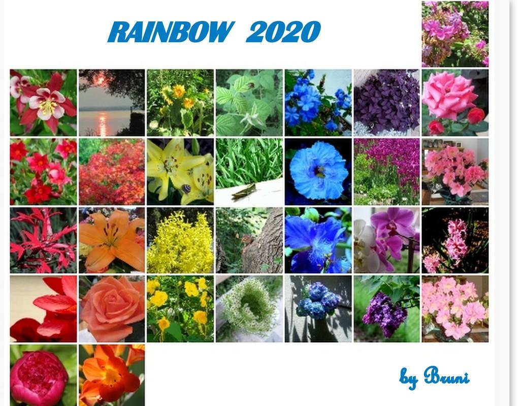 Rainbow 2020 by bruni