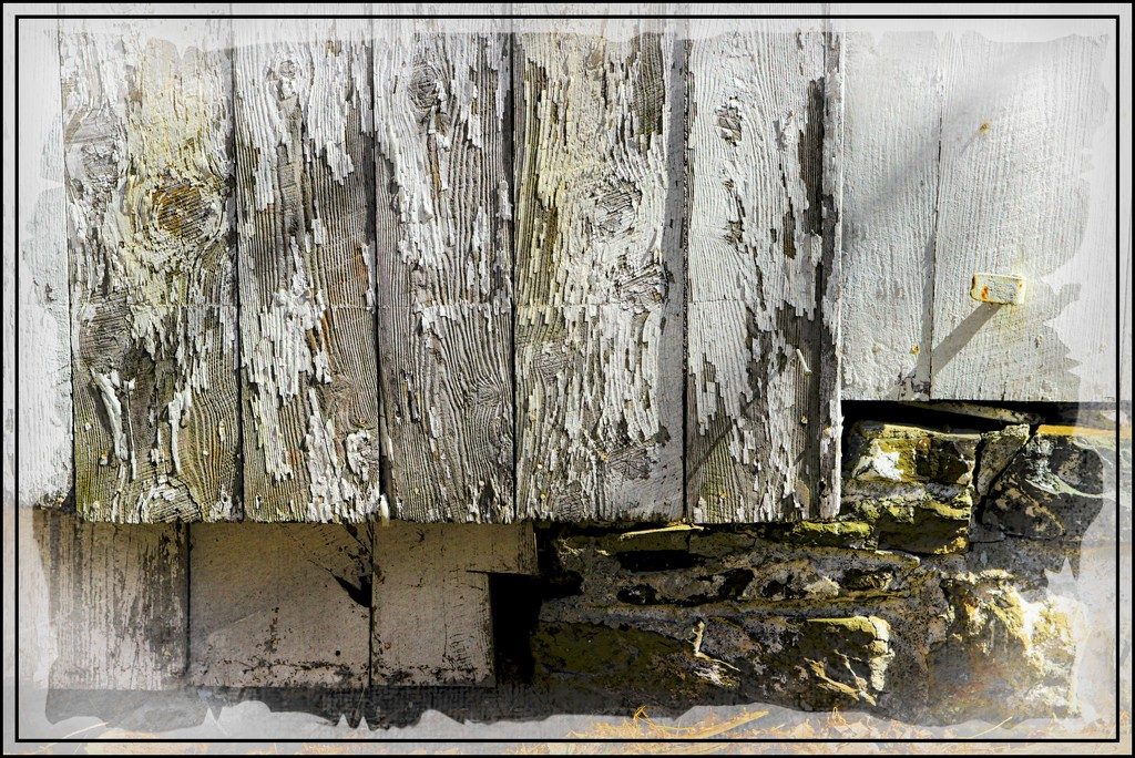 Weathered Wood and Old Foundation Stones by olivetreeann