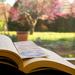 A pleasant read