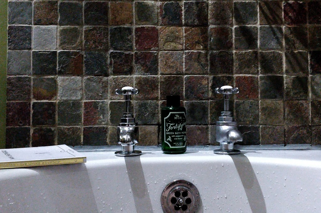 A soak in the bath by roachling