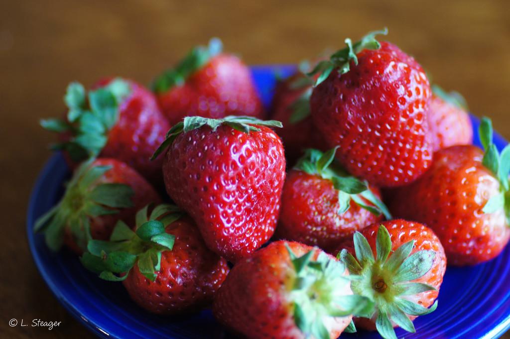 Strawberries by larrysphotos