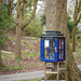 Little Library in the Woods
