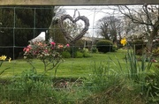 4th Apr 2020 - We love our gardens...the place to be while in lockdown.