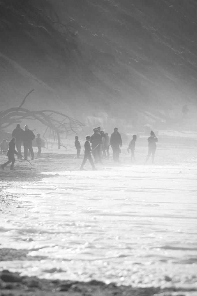 In the evening mist by teriyakih