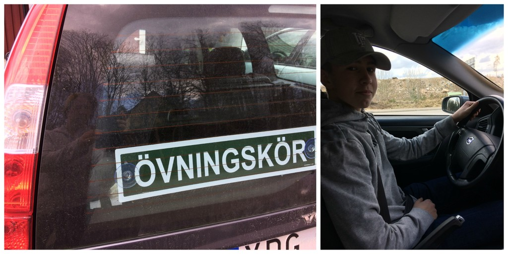 Do Tomato's drive cars! by huvesaker