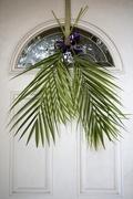 5th Apr 2020 - Palm Sunday