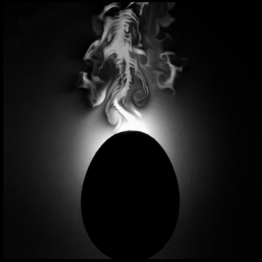 I've decided to make my egg month all b&w with a dash of yolk now & again. So here's yesterday's shot in b&w! by lyndamcg