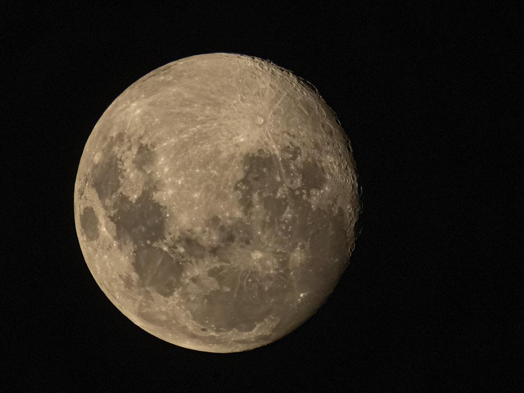 moon by koalagardens