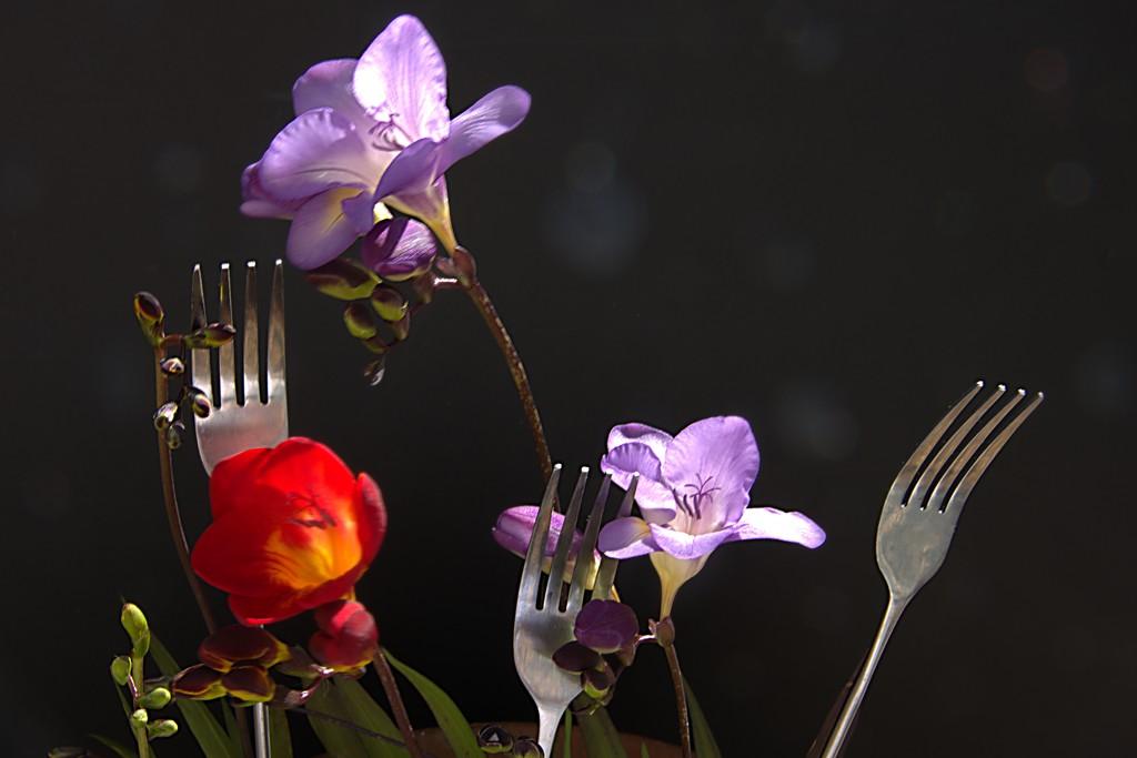 Garden Forks by 30pics4jackiesdiamond